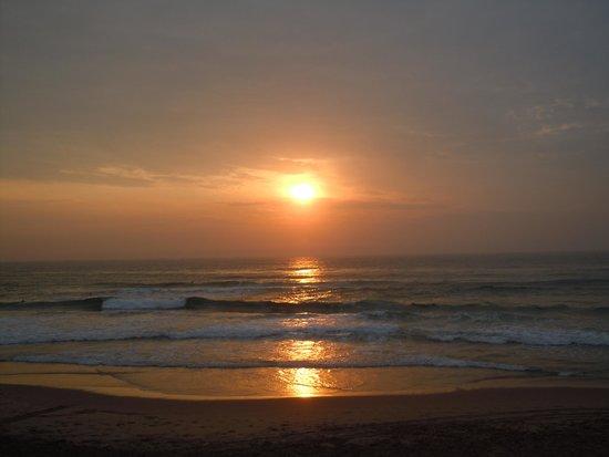 Durban Day Safaris: ダーバンのビーチから見たインド洋
