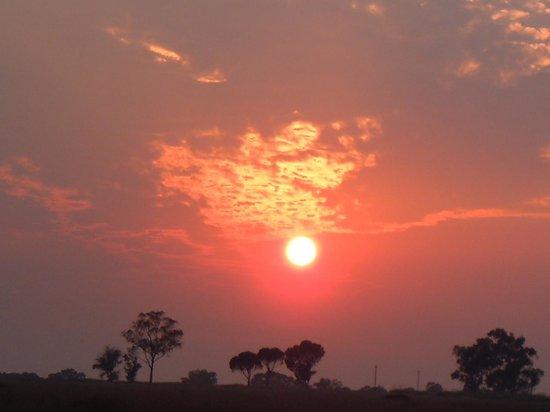 Durban Day Safaris: 朝日が昇ります。