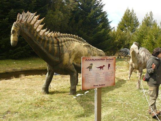 Parque Nahuelito: Amargasaurus