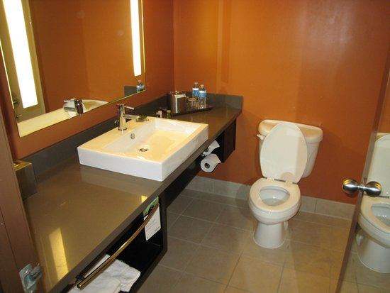 Radisson Hotel Salt Lake City Downtown : Bathroom