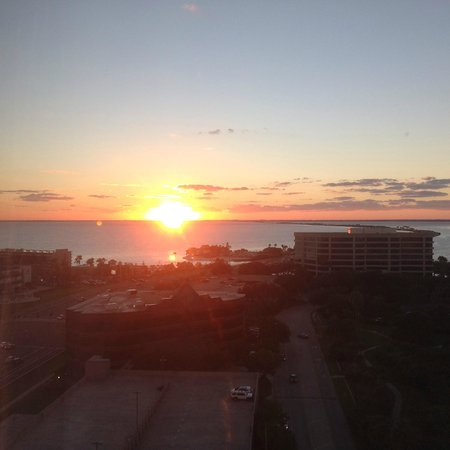 Westin Tampa Bay : Sunset