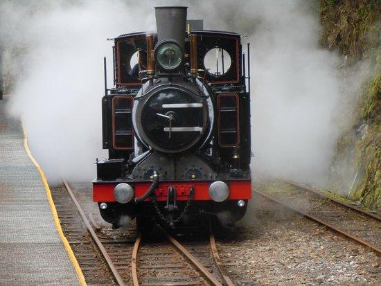 West Coast Wilderness Railway: Steamy