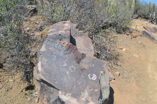 Parque Arqueológico Paidahuén: Petroglifos