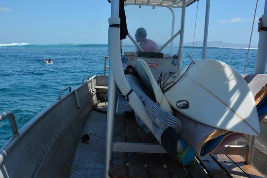 Funky Fish Surf & Beach Resort: surfing