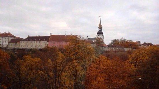 Go Hotel Shnelli: Вид из окна
