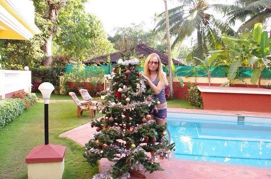 The Goa Village Inn : Возле бассейна