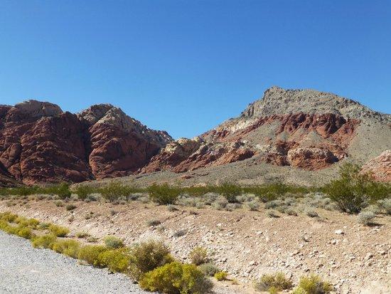 Desert Fox Hummer Tours: Red Rock