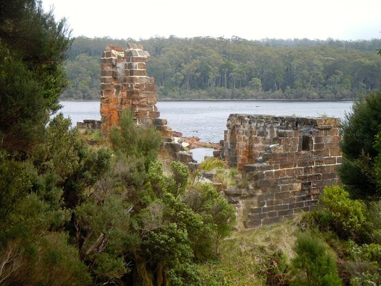 Gordon River Cruises: Sarah Island -remains of prisoners accommodation after being blown up  in the 1920's