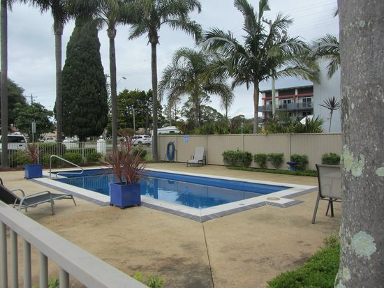 Tuncurry Beach Motel: Pool