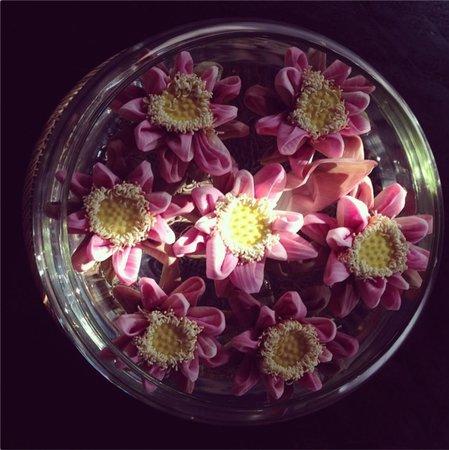 Mulberry Boutique Hotel: charming lotus arrangements