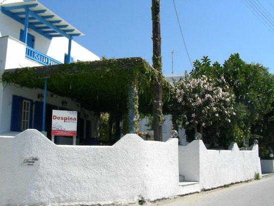 Hotel Despina: Вид на reception