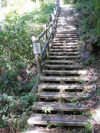 Mitaki Canyon: 急な階段が続きます