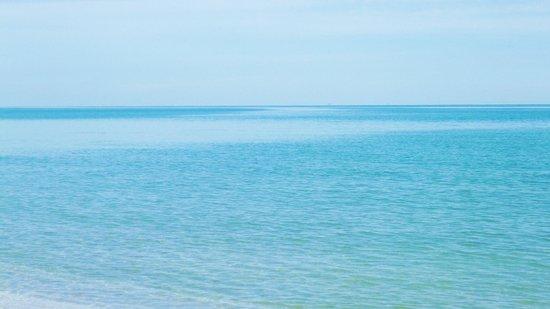 Pineta di Classe: cielo e mare un unico azzurro
