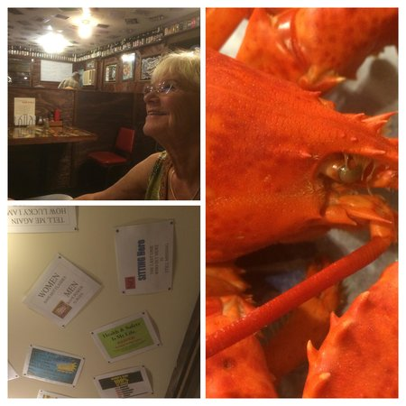 Ruth and Wimpys Kitchen: Ruth and Whipy's collage