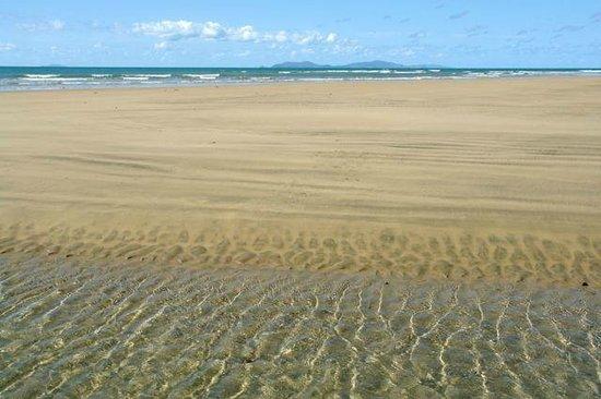 The Shores Holiday Apartments : Blacks Beach