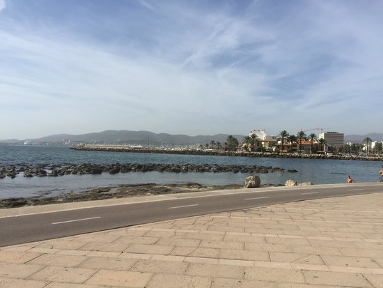 Palma on Bike: What an beautiful way to see the city.