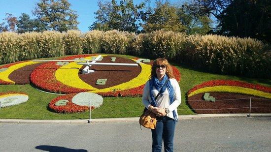 19 10 2014 picture of le jardin anglais geneva for Le jardin anglais geneve