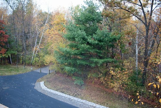 SpringHill Suites Boston Andover: View from Room 300