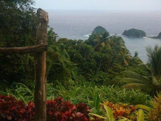 Middleham Falls & Ti Tou Gorge : Dominica
