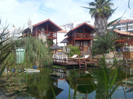 Eco Sound - Ericeira Ecological Resort: Pool and bungalows view