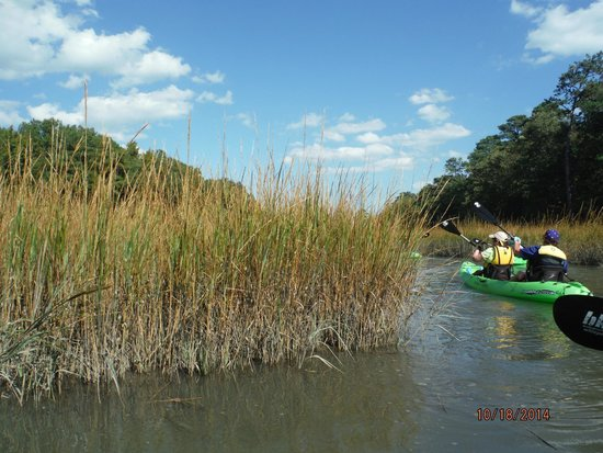 Owl Creek Plan To Paddle At High Tide In Marsh Areas
