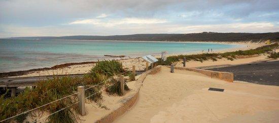 Hamelin Bay: Boat ramp area near Hamelin Point
