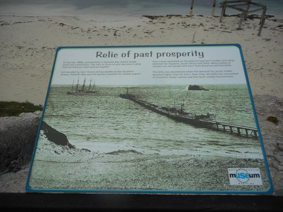 Hamelin Bay: History of the Jetty