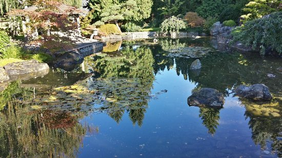 peaceful koi pond picture of kasugai japanese garden