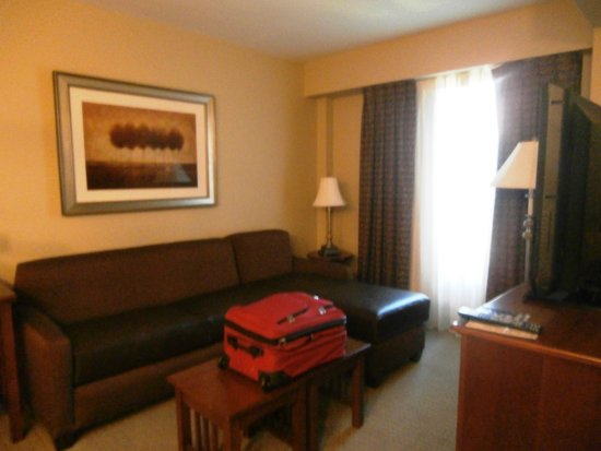 Staybridge Suites Columbia: Pull out couch