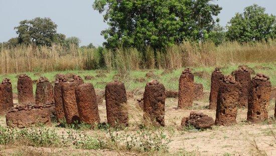 Stone Circles of Senegambia