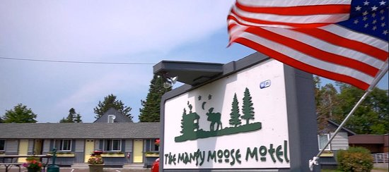 Mangy Moose Motel: Mangy Moose faces Highway 61 and easy access to North Woods.