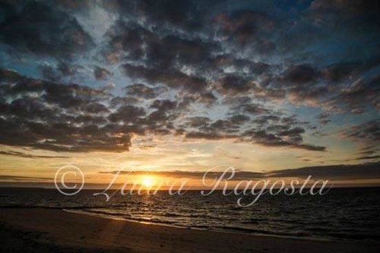 Surfcomber on the Ocean: sunrise