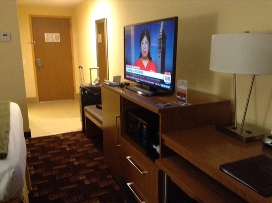 Holiday Inn Express & Suites Fort Lauderdale Airport South: flat screen HD