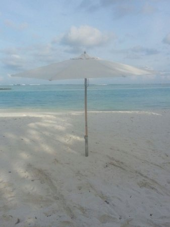 Bibee Maldives: our own beach! just for us!