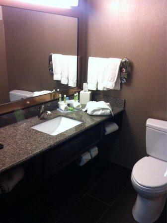 Holiday Inn Express Hotel & Suites Cheyenne: Bathroom