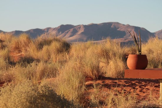 Wolwedans Dune Camp: Vue de la terrasse