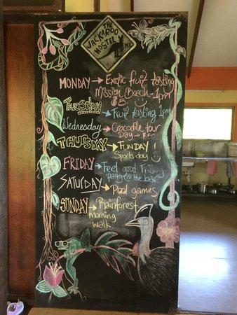 Jackaroo Treehouse Mission Beach: panel de actividades