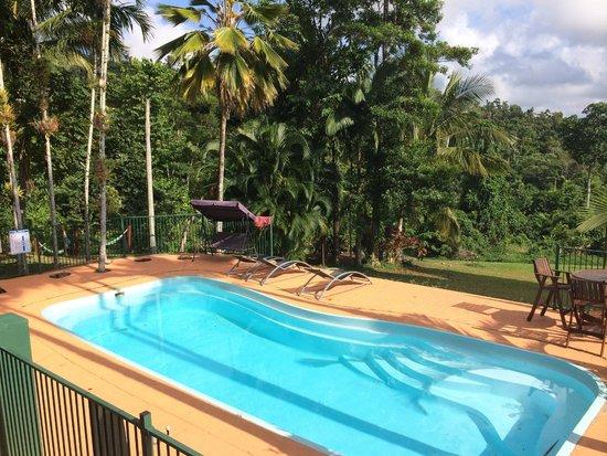 Jackaroo Treehouse Mission Beach Updated 2018 Hostel Reviews Price Comparison Bingil Bay Australia Tripadvisor