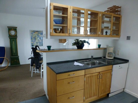 Ascot Hotel: Penthouse kitchen