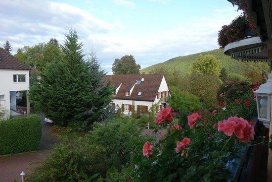 Schwarzmatt Hotel: View from first floor room.