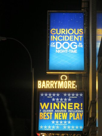 Barrymore Theatre : Curious Incident of the dog in the Night-time