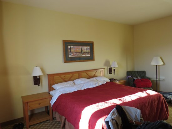 Country Inn & Suites By Carlson, Tucson Airport: camera king