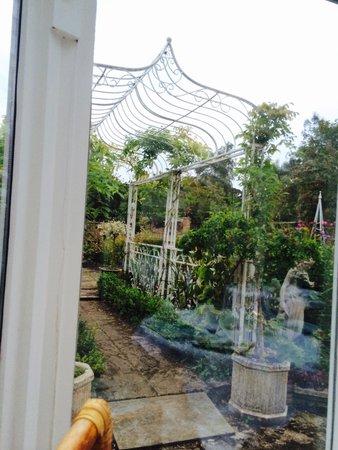 Mount Ceres Guest House: Garden