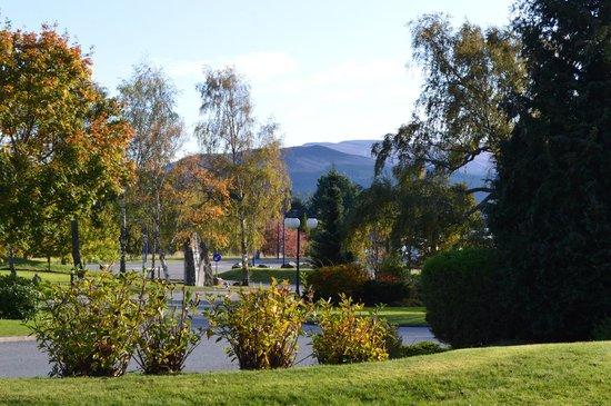 Scandinavian Village: View from front door