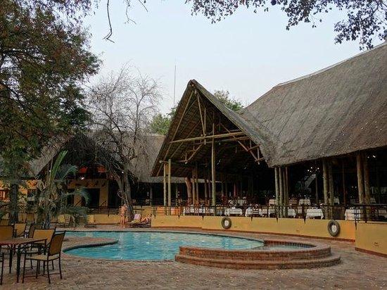 standard room picture of chobe safari lodge kasane. Black Bedroom Furniture Sets. Home Design Ideas
