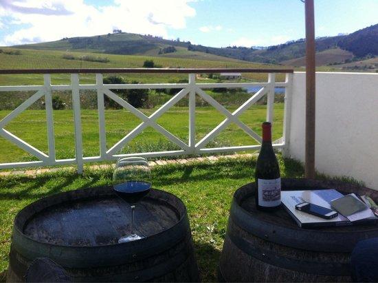 Mulderbosch Vineyards : Perfect day