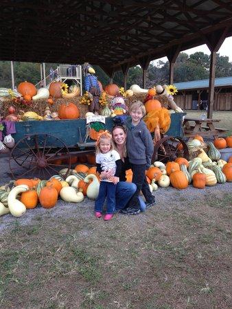 Kyker Farms Corn Maze: Kyker Farms