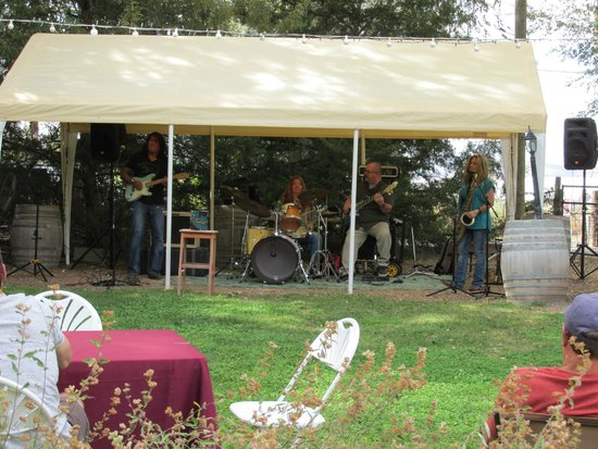 Granite Creek Vineyards: Sir Harrison Band at play