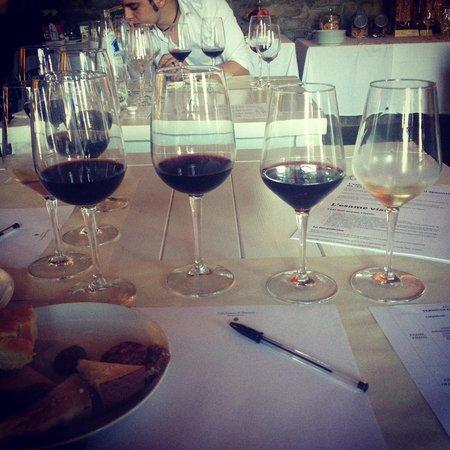 Villa Cassia di Baccano: Degustazione vini
