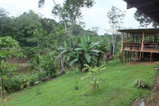 Laguna del Lagarto Lodge : lodge
